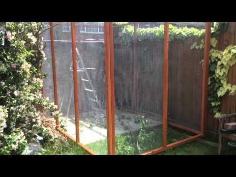 Building aviary