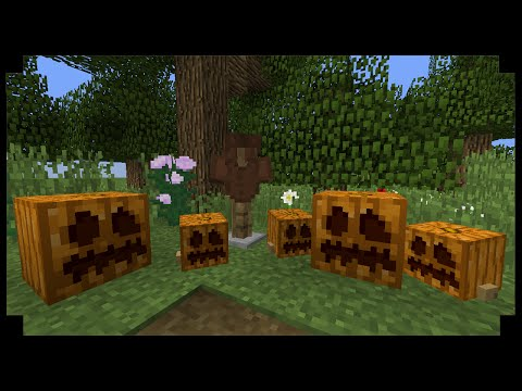 ✪Minecraft: How to make a pumpkin patch (Small/Large Pumpkins)