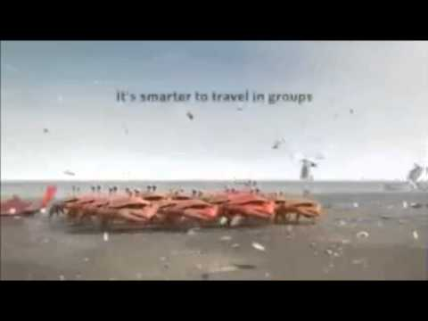 Crabs Funny Videos ||Strategy Planning