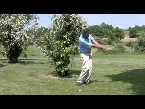 How to hit a low golf shot under trees - video golf tip from pro