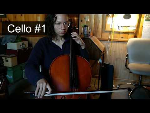 Cello Comparison: Rental vs Potential Purchase!