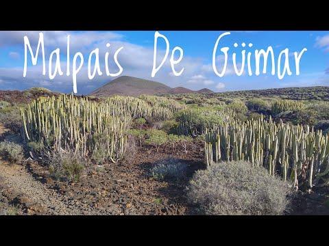Malpais De Güimar - A Vulcanic Natural Reserve 🌋