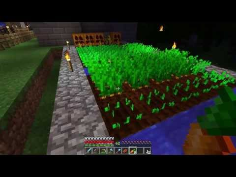 Minecraft Carrots Guide (A guide to carrots in Vanilla Minecraft, planting, finding them, eating)
