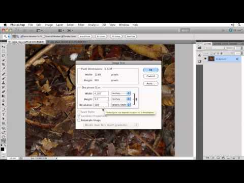 Photoshop CS5: Image Size and Resolution and Resizing an Image