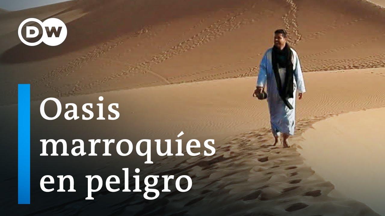 Cambio climático en el desierto | DW Documental