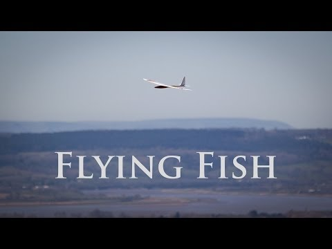Flying Fish in a spin on Selsley Common, UK
