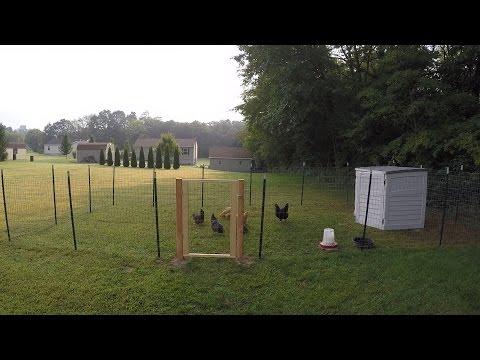 My Chicken Coop & Run