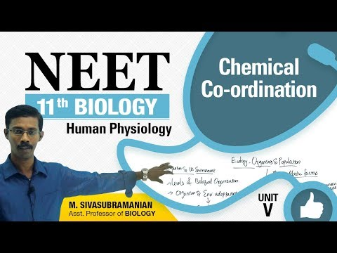 NEET 11th Biology || Chemical Co-ordination || Human Physiology || Unit-V