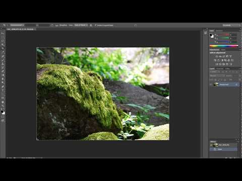 How to see shutter actuations Nikon or Canon DSLRs using Photoshop