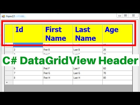C# DataGridView Header Tutorial [ with source code ]
