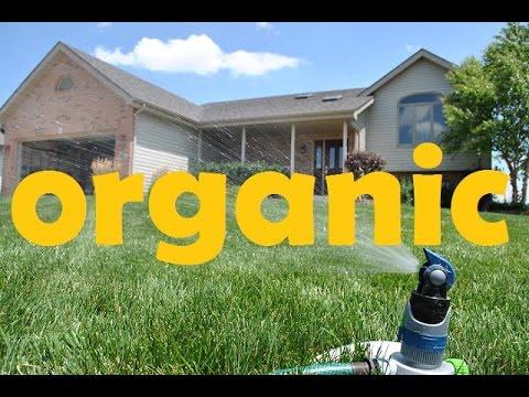 Organic Fertilizer Program That I Use On My Lawn