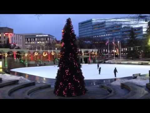 Calgary RGB tree Nightime
