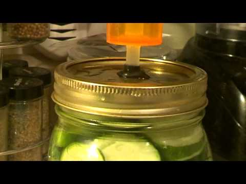Lacto Fermented Diy Fermentation Air lock