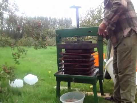 Making sweet and hard apple cider