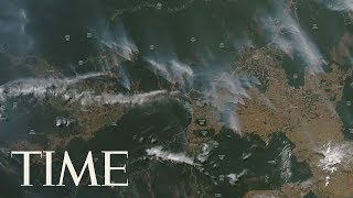 A Record Number Of Fires Are Currently Burning Across The Amazon Rainforest | TIME