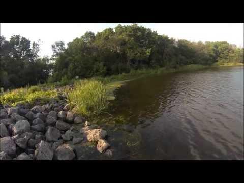Topwater bass fishing Illinois.