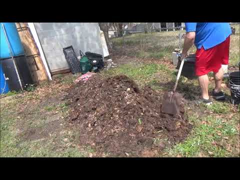 Backyard Composting and fun facts