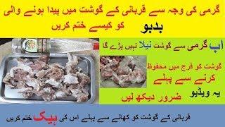 How To  Preserve & Freeze Meat Properly  || Eid ul Azha  By Hamida dehlvi
