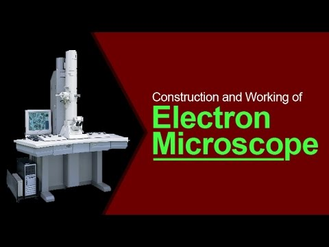 Construction and Working of Electron Microscope