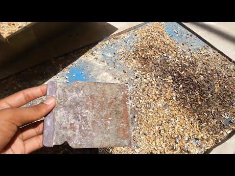 How to clean birds cage [video in urdu & hindi]