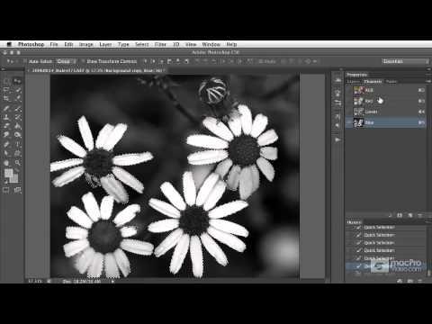 Photoshop CS6 102: Selection  Masking Techniques - 36. Alpha Channel Overview