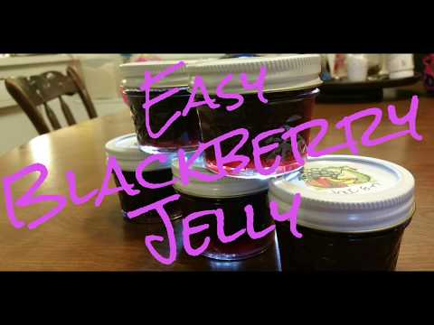 Easy Blackberry Jelly! How to Make and Preserve Homemade Organic Wild Blackberry Jelly