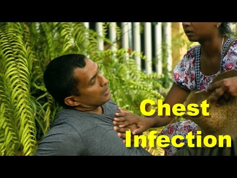 Chest Infection How to Cure Chest Infection Symptoms Best Chest Infection Remedies
