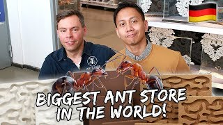 Visiting The Biggest ANTSTORE in the World | Vlog #558
