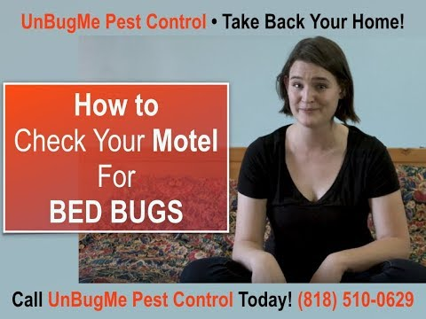 How to Check Your Hotel/Motel For BED BUGS