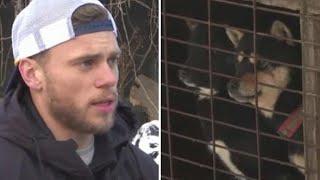 Olympian Gus Kenworthy Visits Korean Dog Meat Farm: