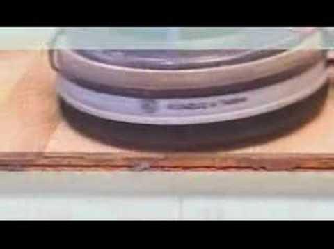 Distressing process on hardwood floor