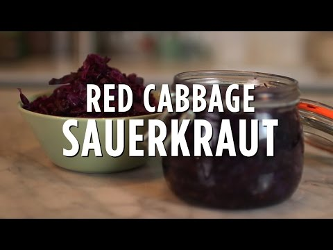 Raw Press X Sugar Free Siblings   Red Cabbage Sauerkraut