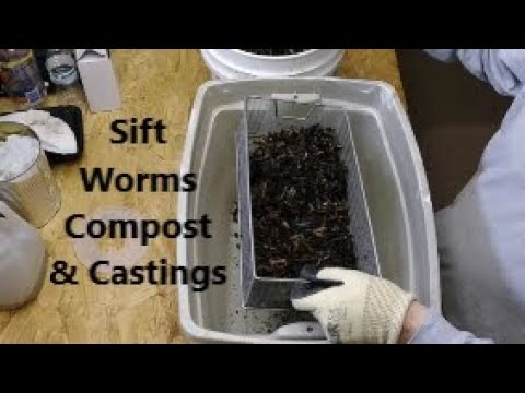 DIY Easy How To Sift Worm Compost & Castings From Red Wigglers African & European Nightcrawlers & Ti