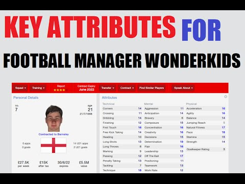 Guide to the KEY attributes for Football Manager 2014 WONDERKIDS