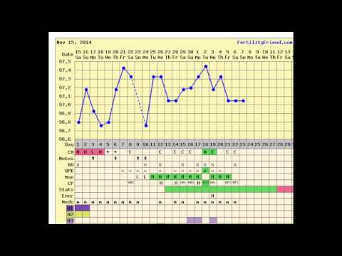 Cycle Day 23 update| Ovulation Yes or No - TTC Baby #1 with PCOS