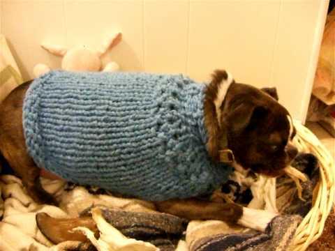 olgas sweater