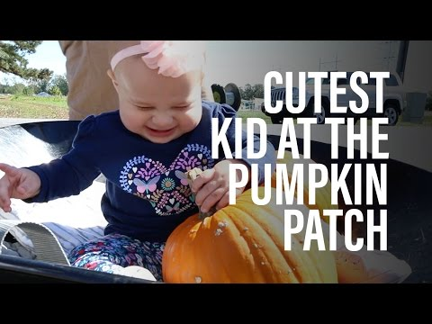 Cutest baby at the pumpkin patch, hands down.