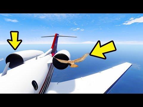 Pode um pássaro derrubar um avião? GTA 5