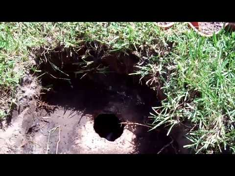 Septic Tank Pump Out