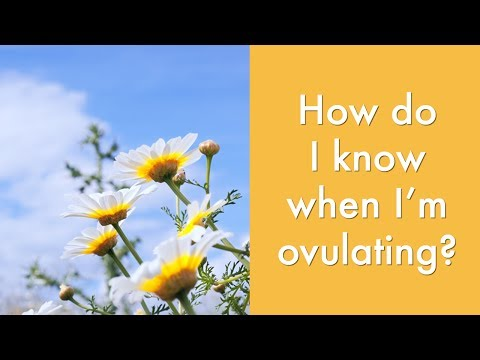How do I know when I'm ovulating? | Fertility & Natural Birth Control Advice