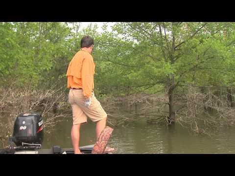 Bluegill & Red Ear Fishing on Lake Barkley