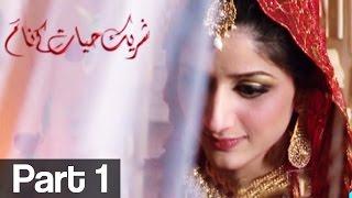 Shareek e Hayyat kay Naam Part 1 | ATV