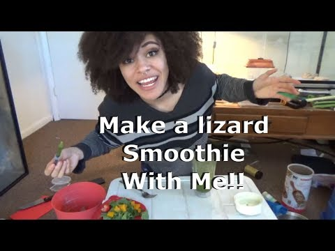 How to Make a Slurry for Bearded Dragons