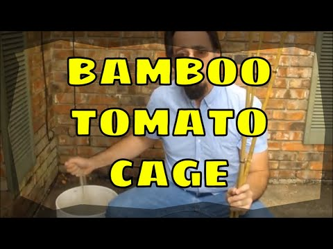 Making a Bamboo Tomato Cage