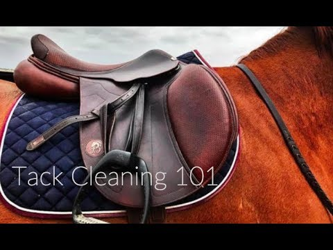 How I Clean My Saddle| Tack Cleaning 101