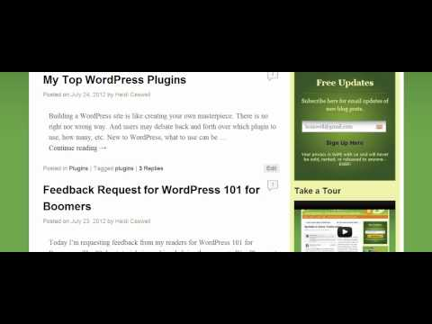 WP Category Links Not Working with SEO by Yoast