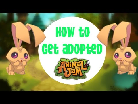 Animal Jam | How to get adopted
