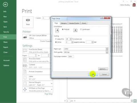 VTC Player   Microsoft Excel 2013, Shrink to Fit