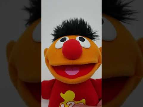 Counting Rubber Ducky Ernie