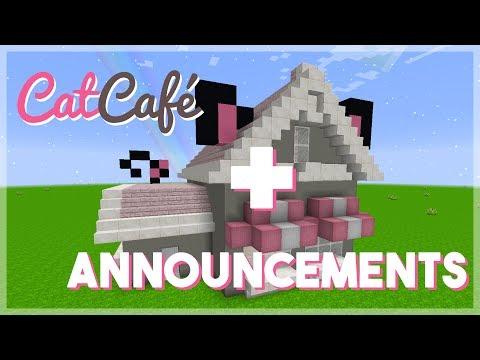 Important Announcement + Cat Café Build
